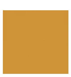 Paran SIngh Photography